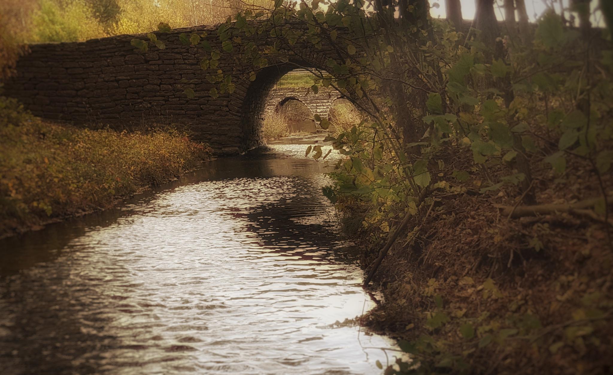 Bridge by Annica Josefsson