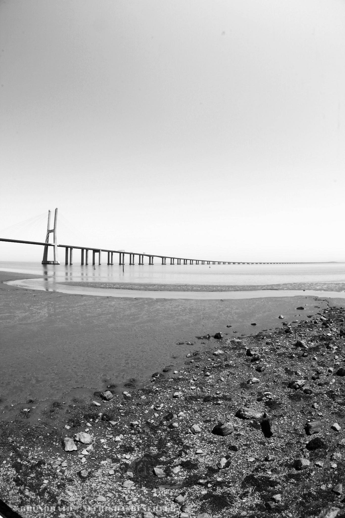 Vasco da Gama Bridge by Bruno Rato