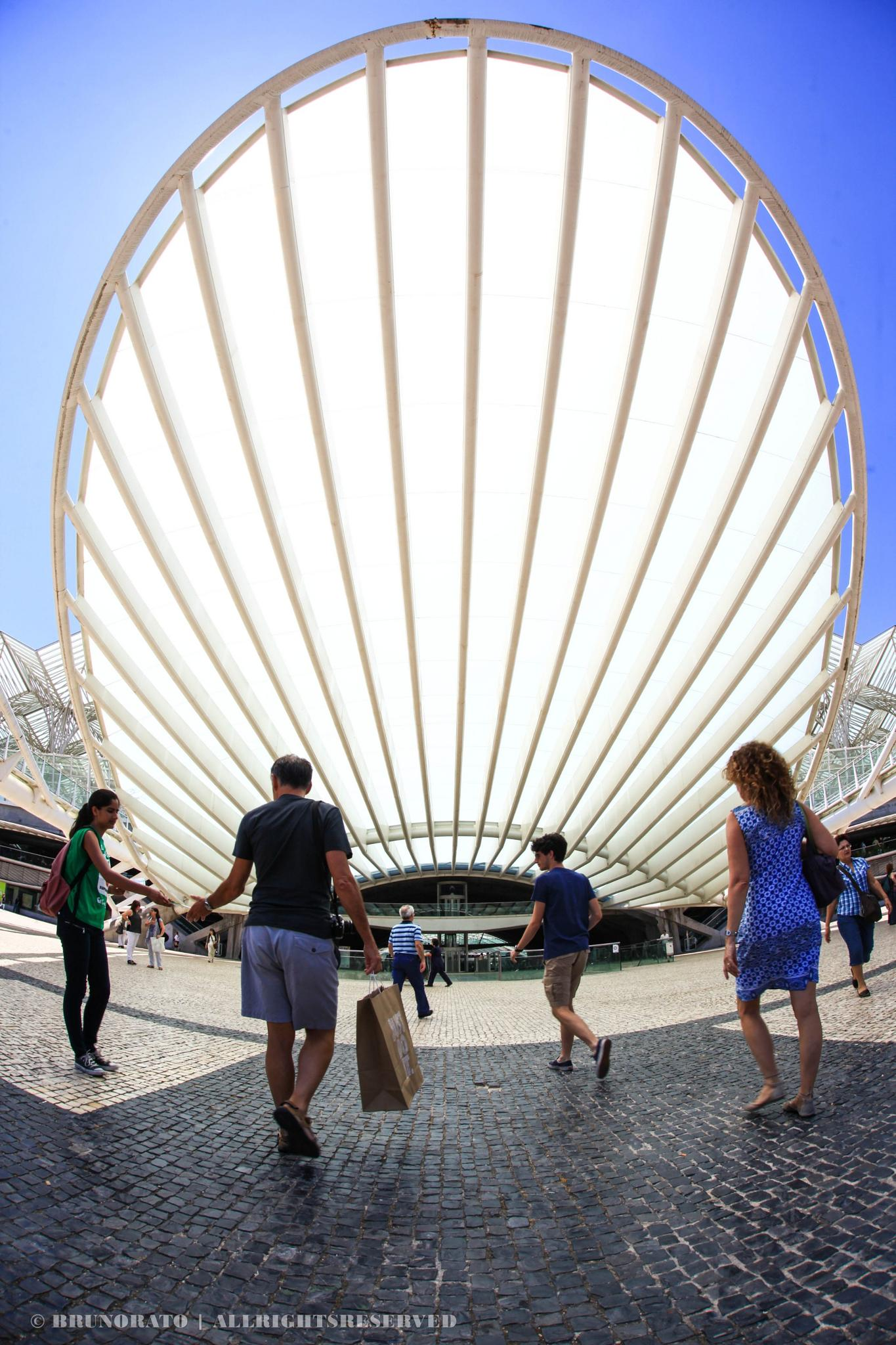 Lisbon Shell by Bruno Rato