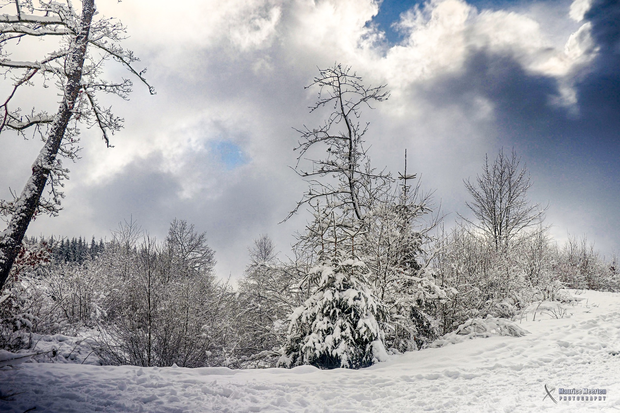 Winter by Maurice Meerten