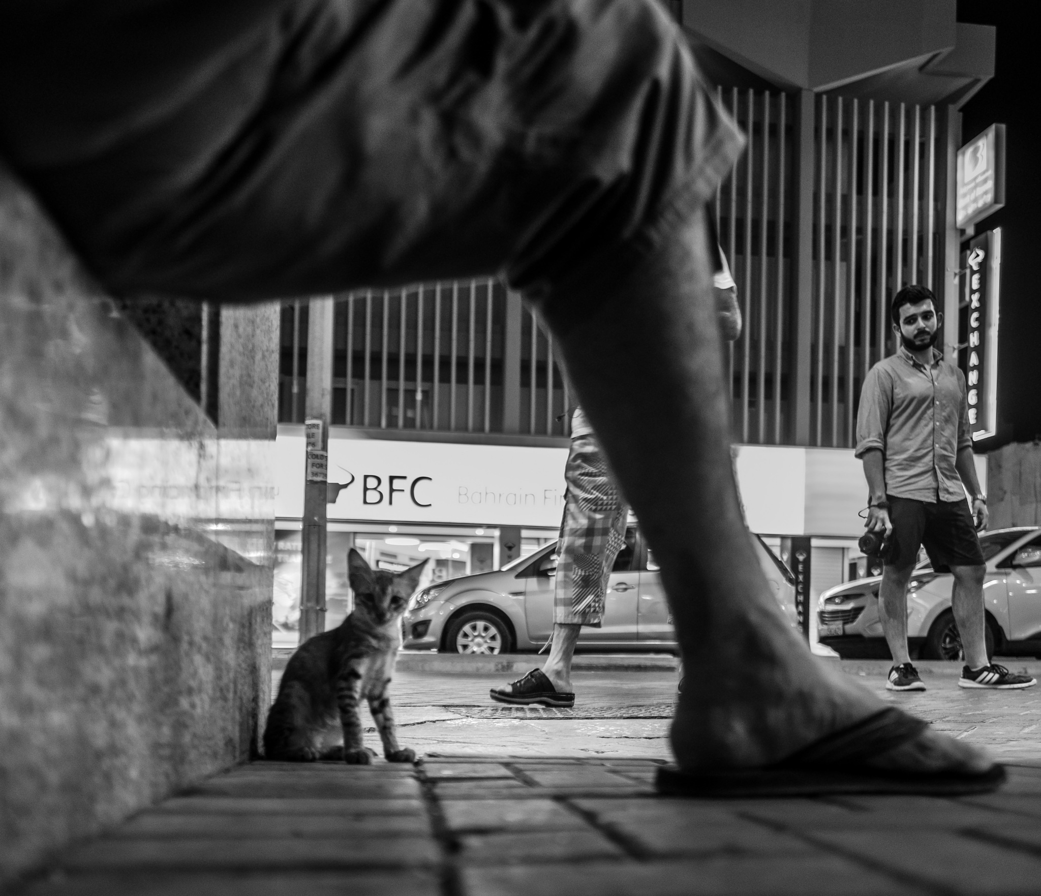 FRAMED by Mustafa Bastaki