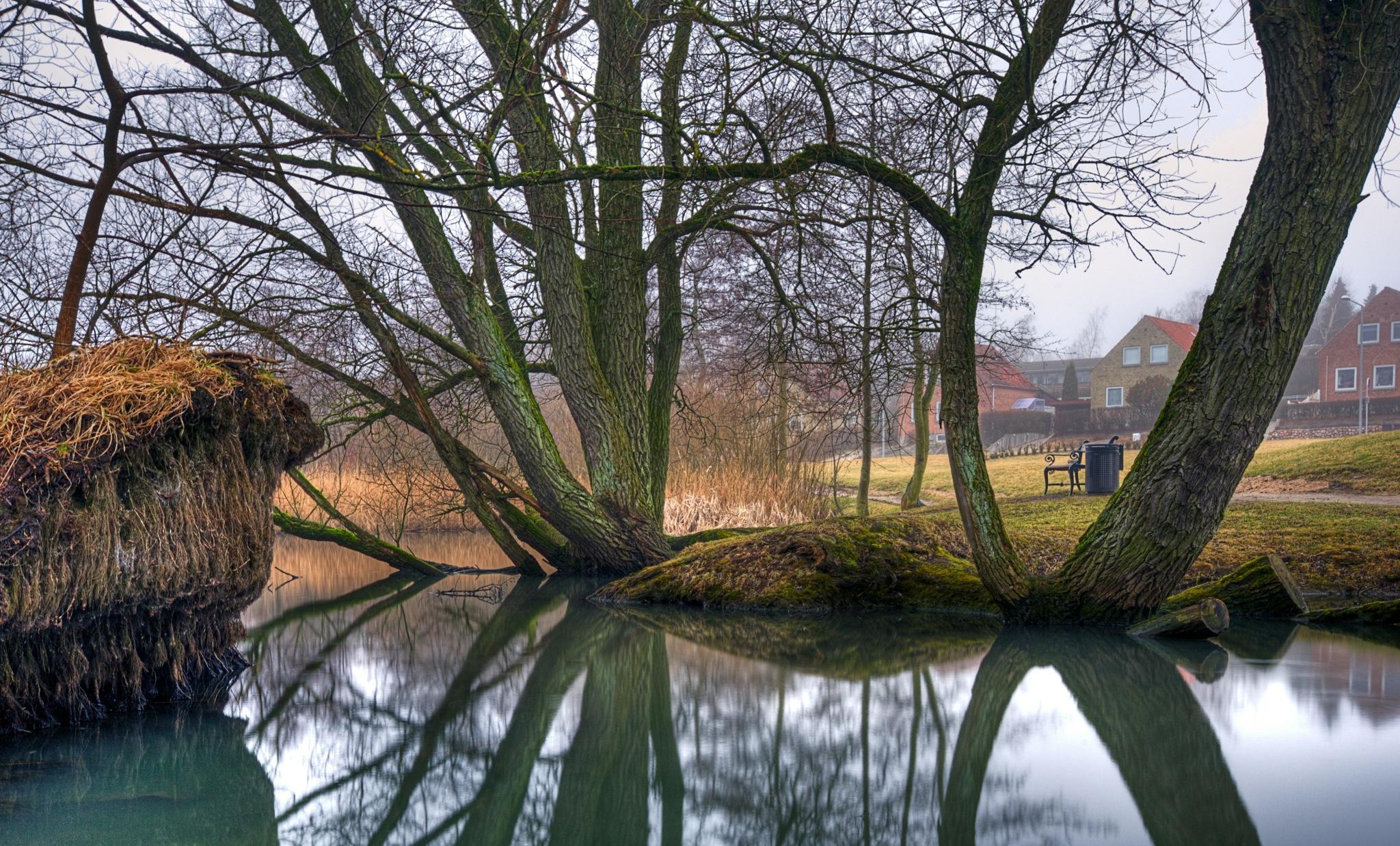 Misty Mood by Keld Bach Photography