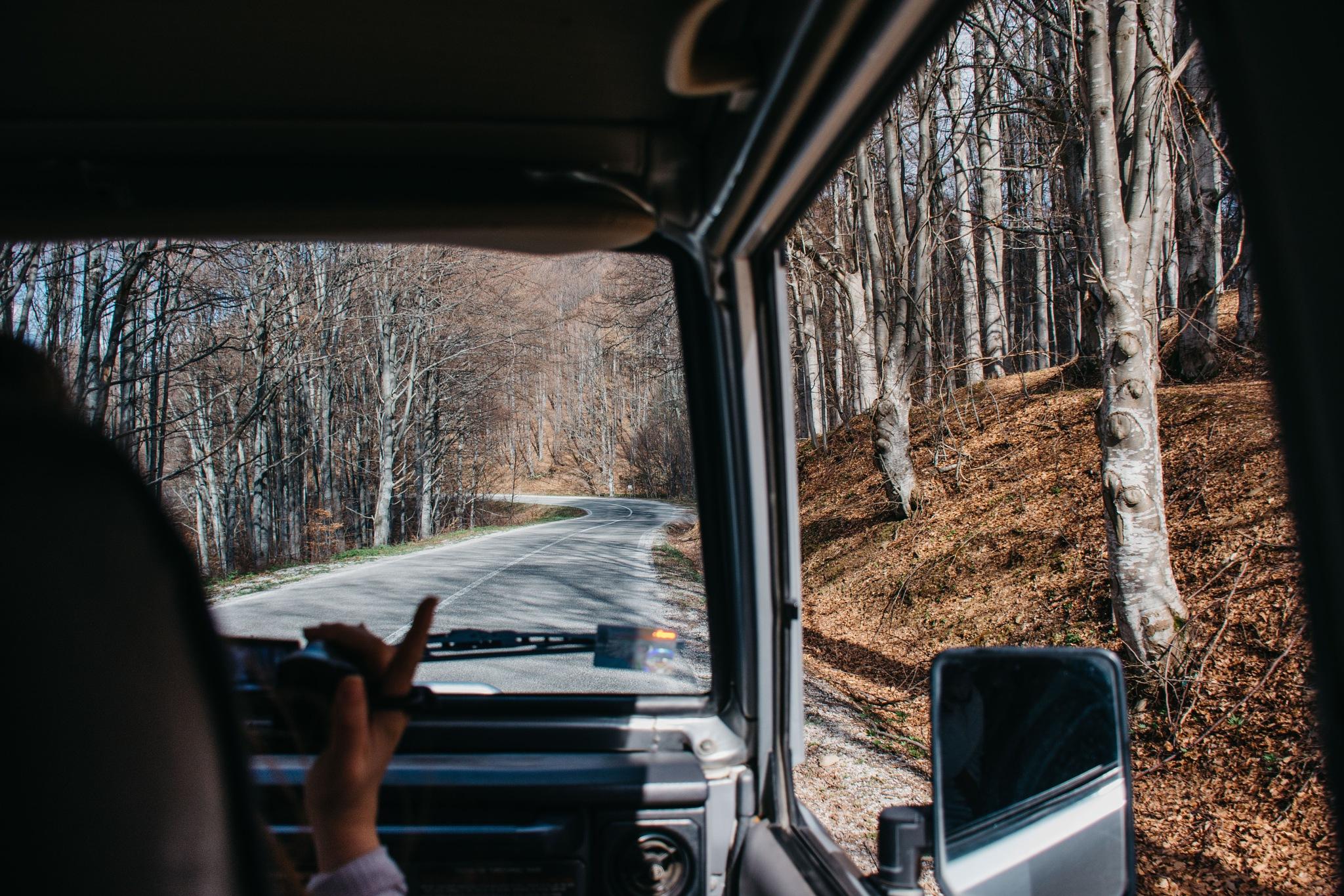 Driving in nature by Vuk Šarić
