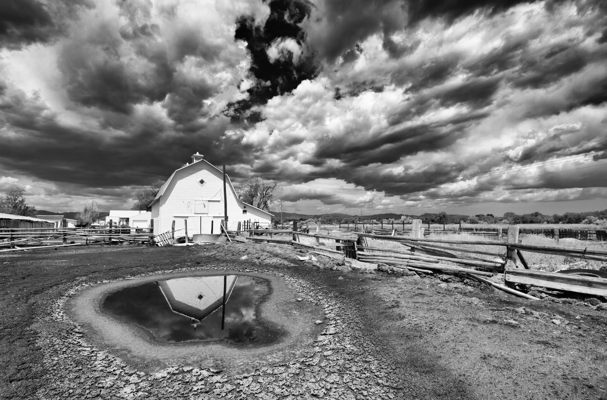 the weber barn by Eddie Tkowksi
