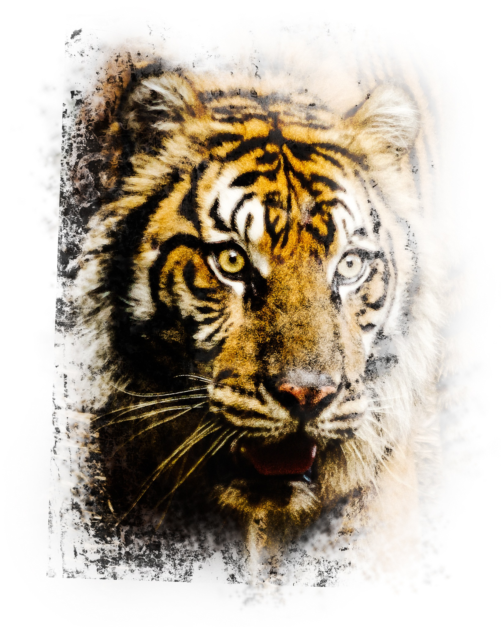Art-ful Tiger by Betty Hodges