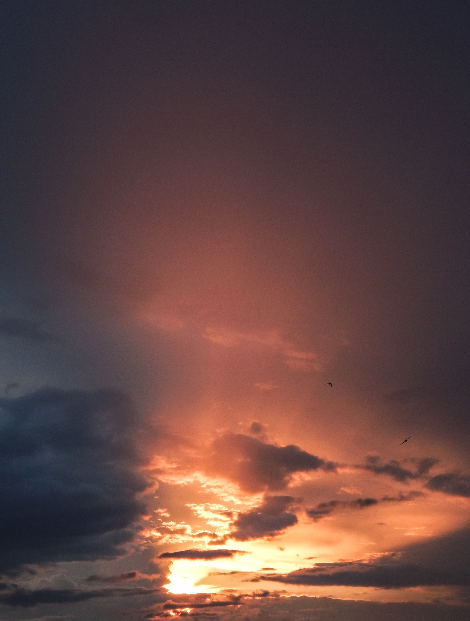 sunset by Alina_Ch