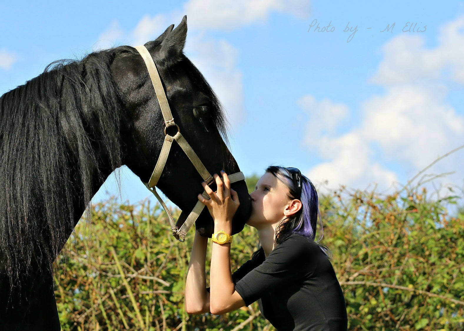 Equine & Human showing passion by Martin Ellis