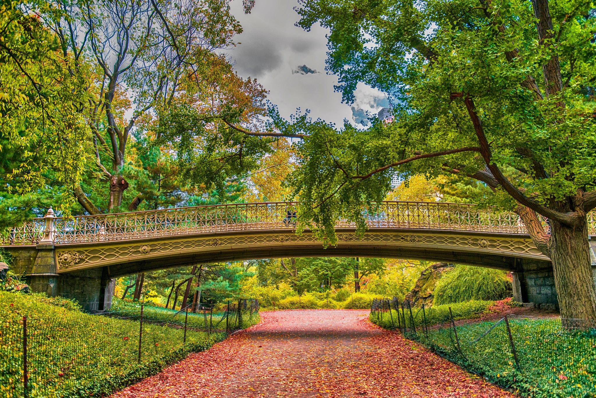 NY Central Park Pine Bank Bridge (62nd street)  by Manny D Suriel
