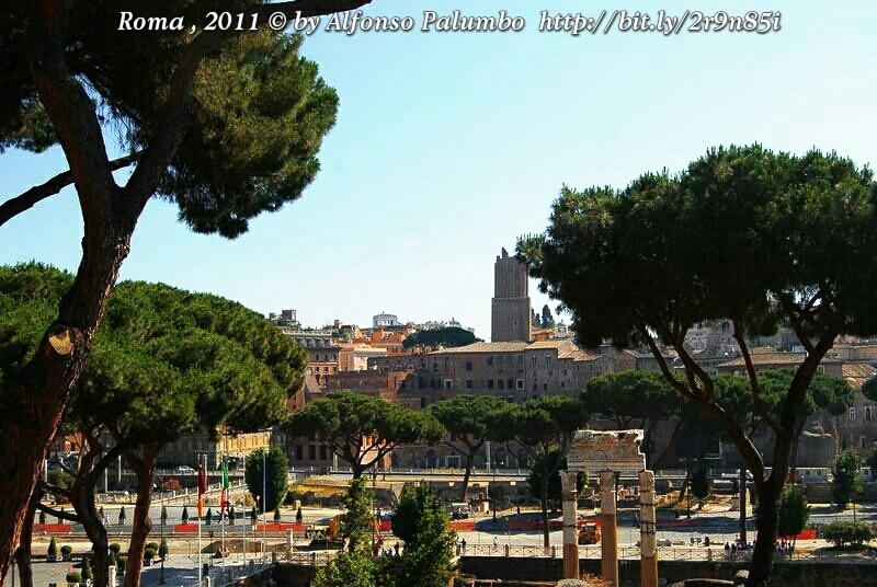 Roma by Alfonso Palumbo
