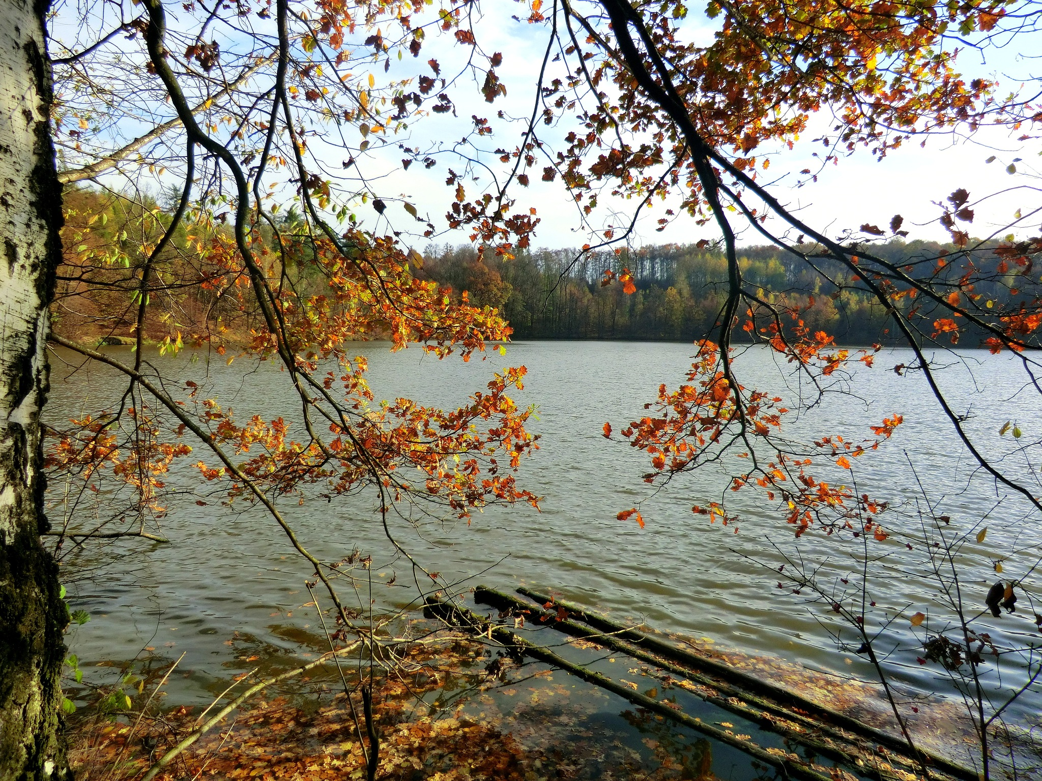 Autumn mood by magdalenahudranova