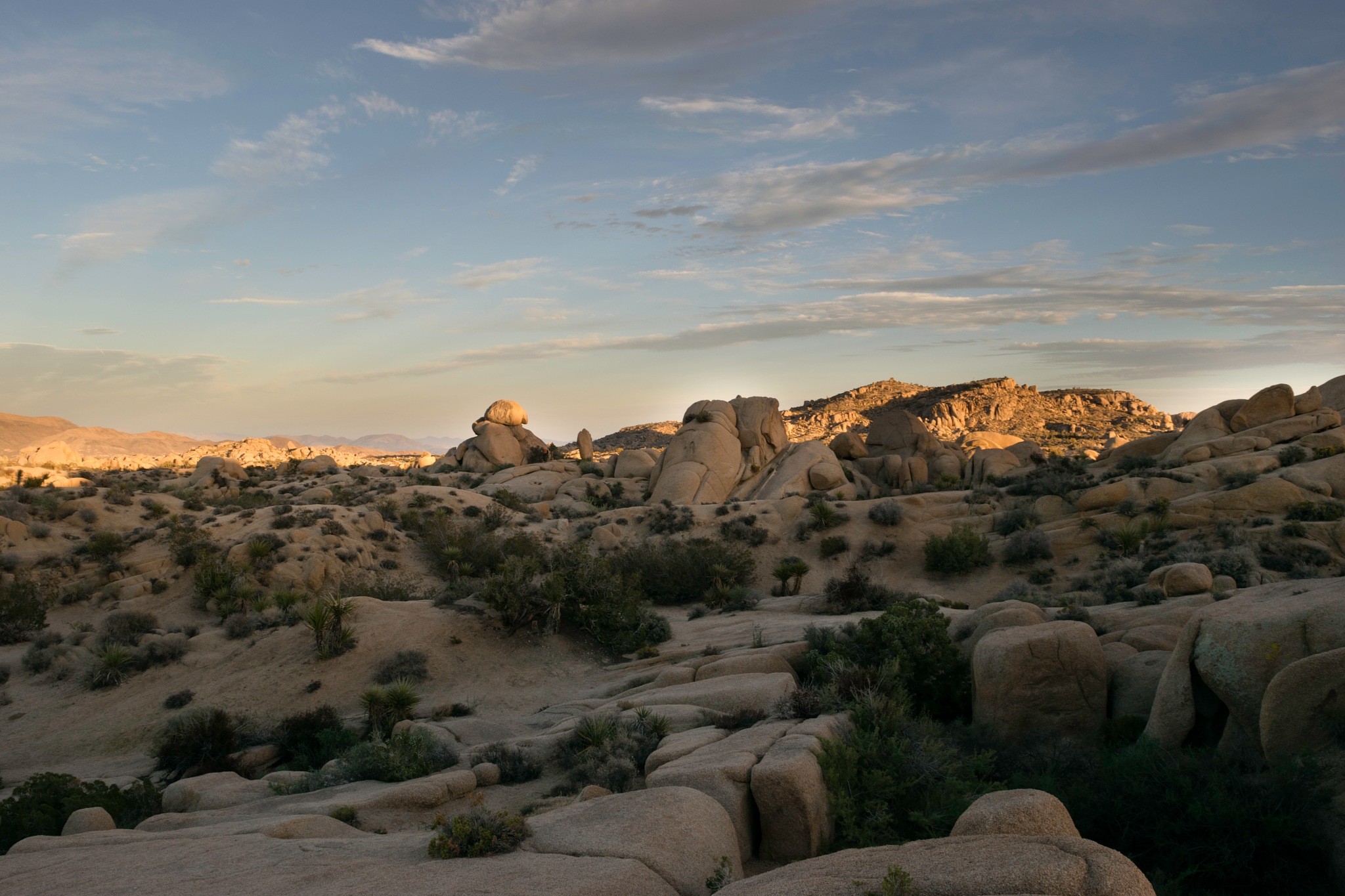 Jumbo Rocks, Joshua Tree NP by Andrew Butler