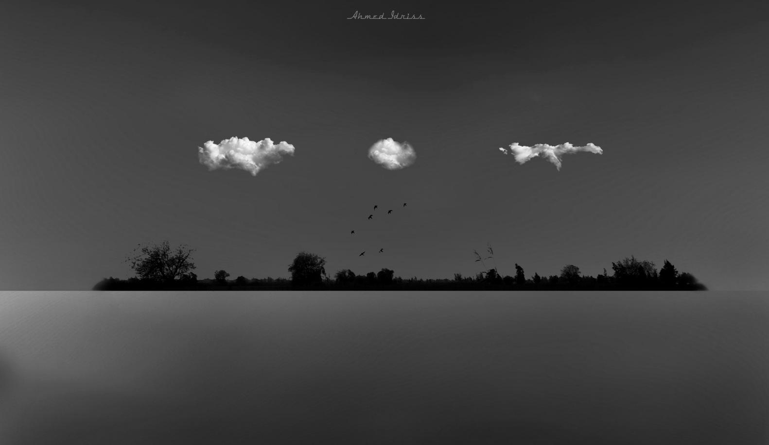 Island  by Ahmed Idris