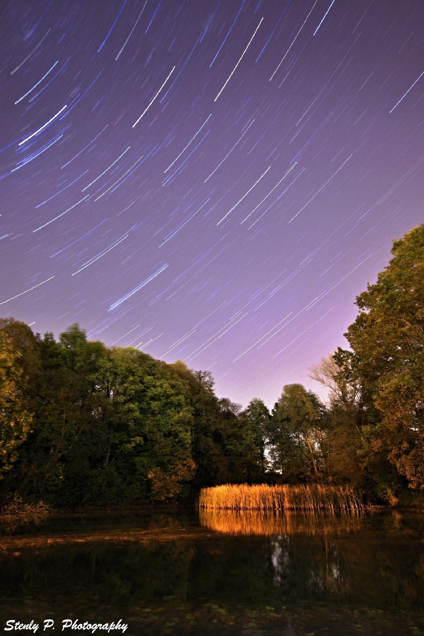 evening pond by Stenly Priesol