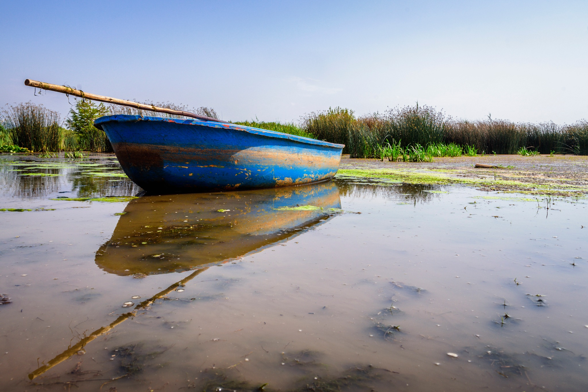 Blue boat by Noureddine Belfethi