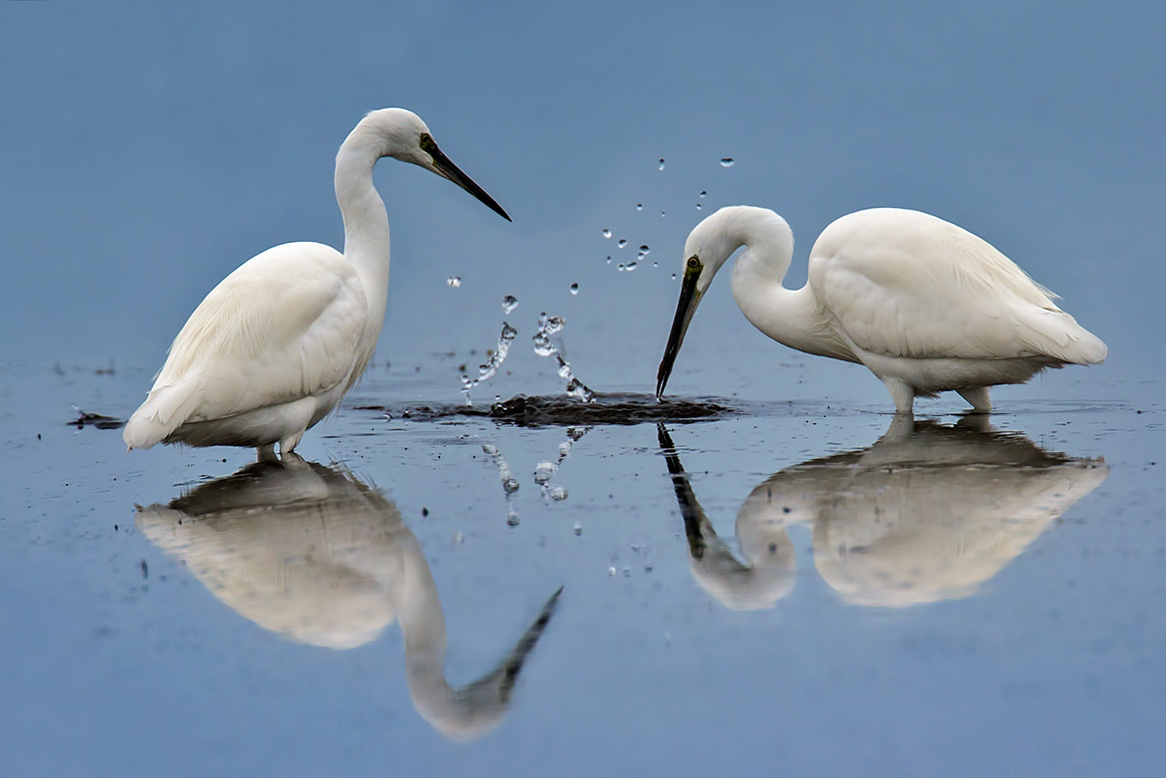 Reflection In blue and white!! by Sotiris Siomis