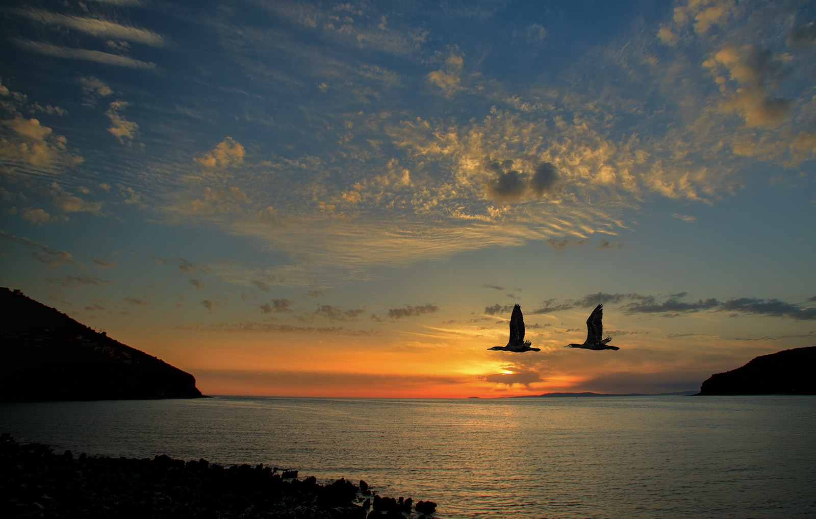 Open your wings and make your dream come true!!! by Sotiris Siomis