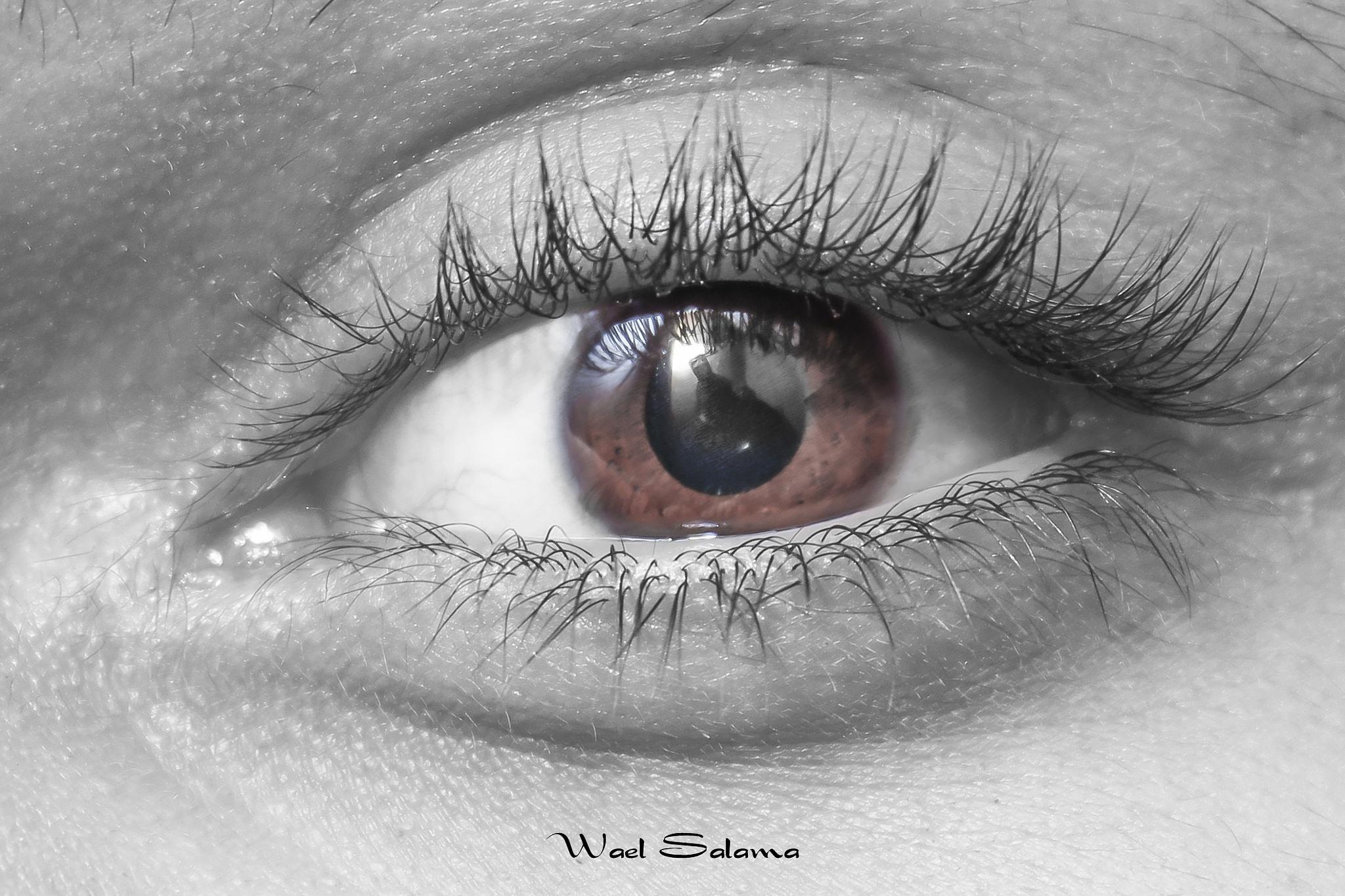 eye by Wael Salama