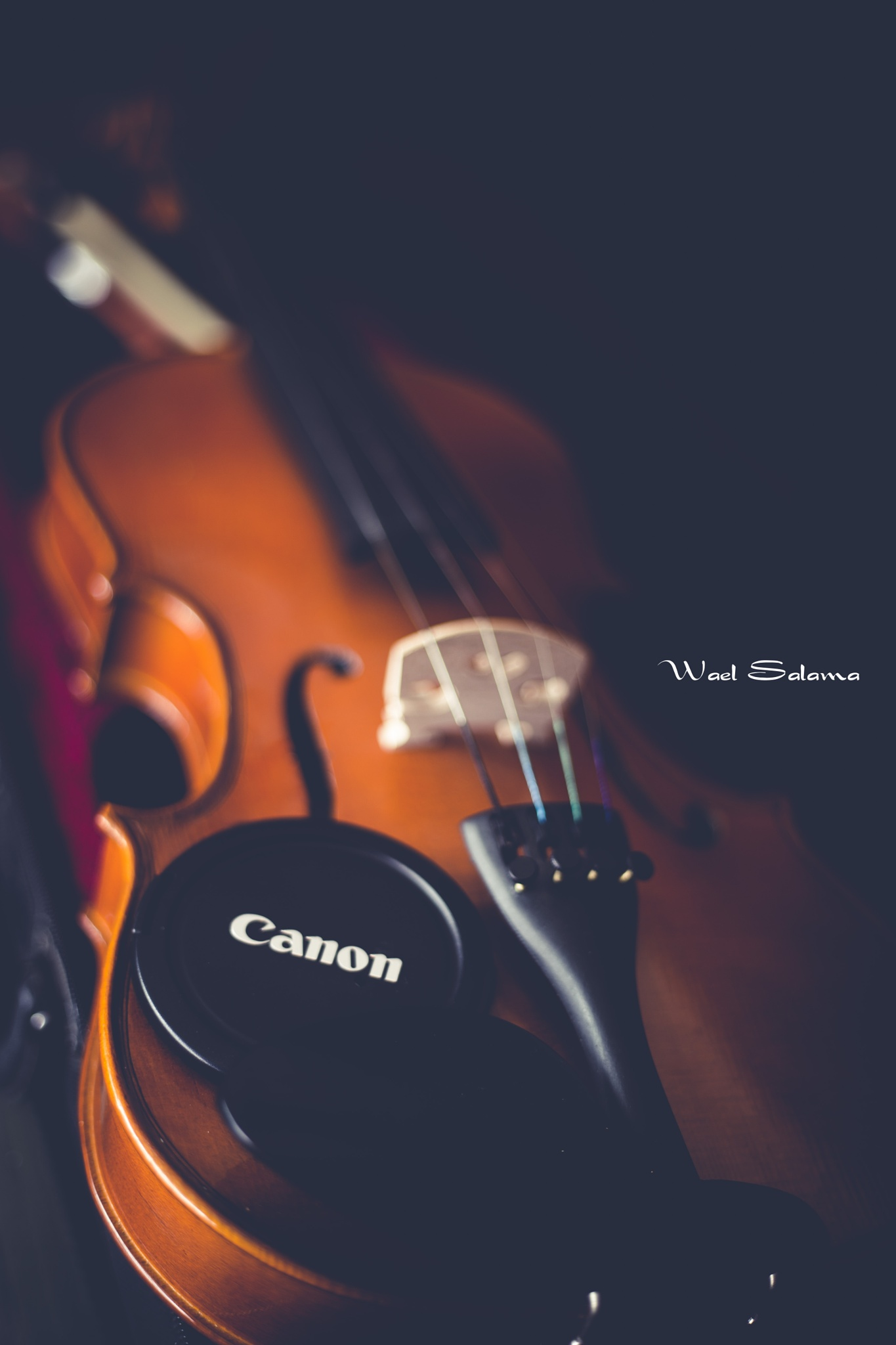 the magic of music and ph by Wael Salama