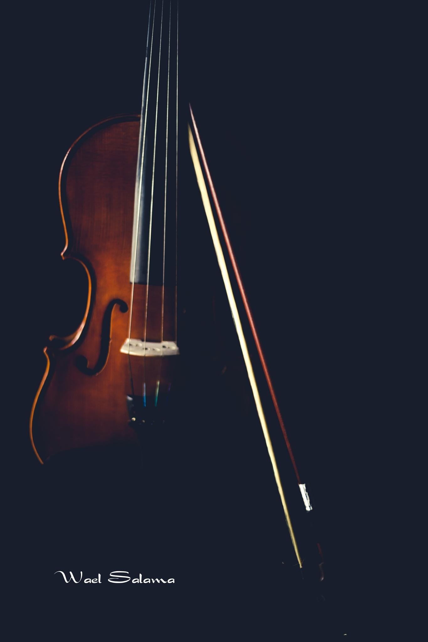 sense of music by Wael Salama