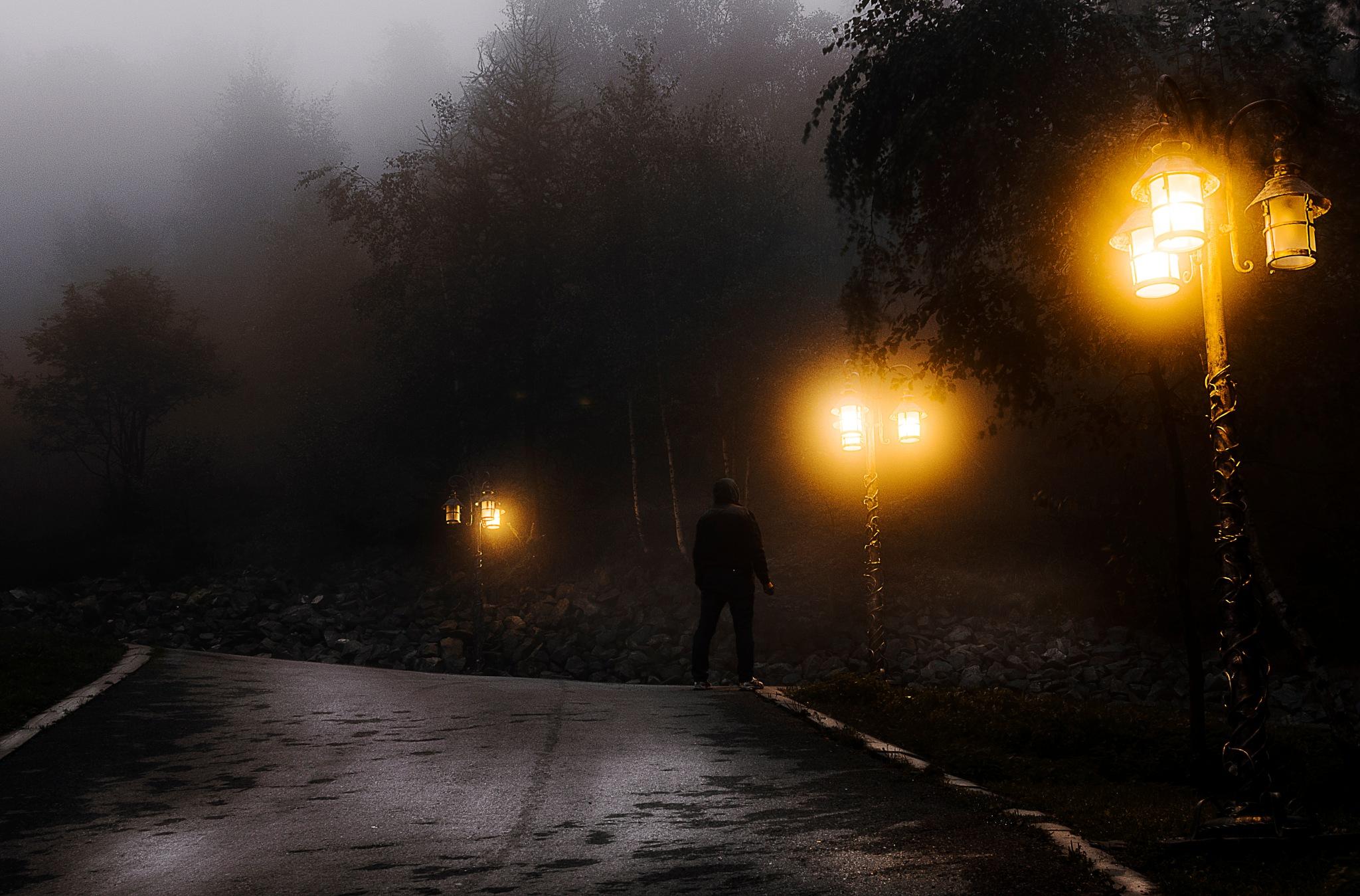 Foggy evening  by krystian7art