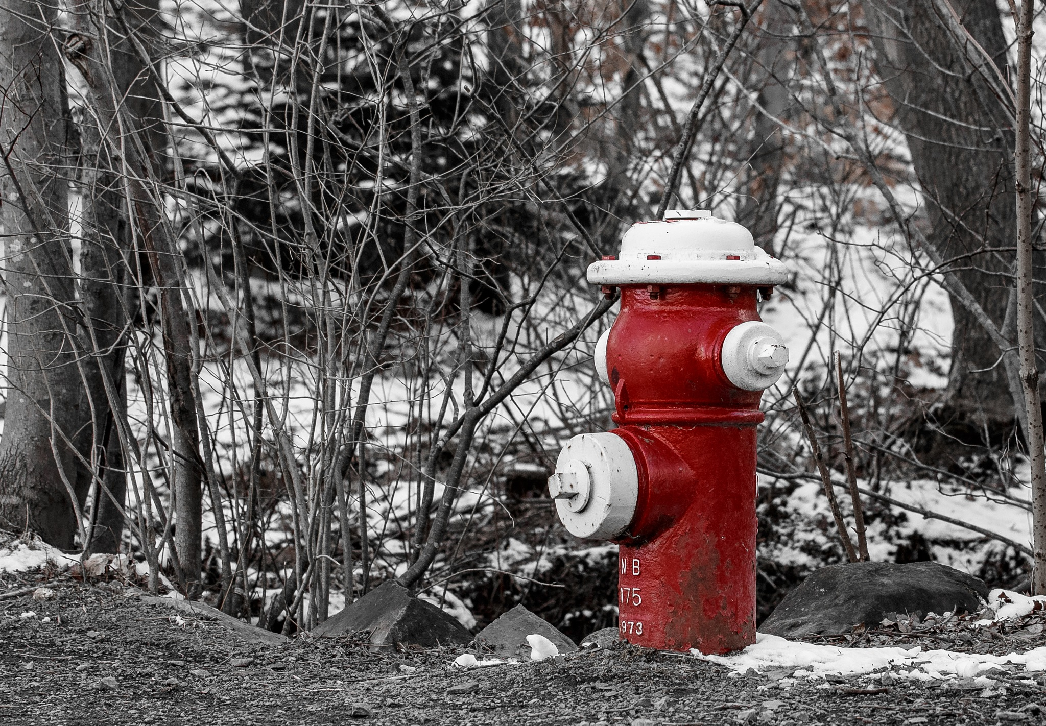 Fire Hydrant by Kevin Trudeau