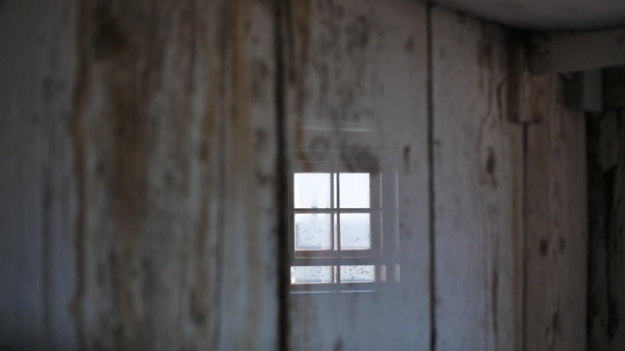 frozen wooden window by Henry