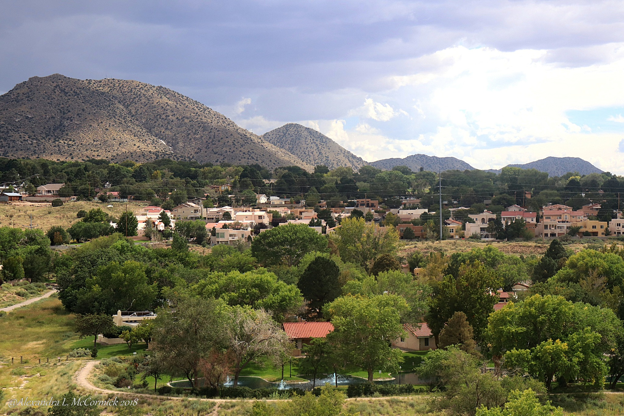 Mountain View Of New Mexico by Alexandra L. McCormick
