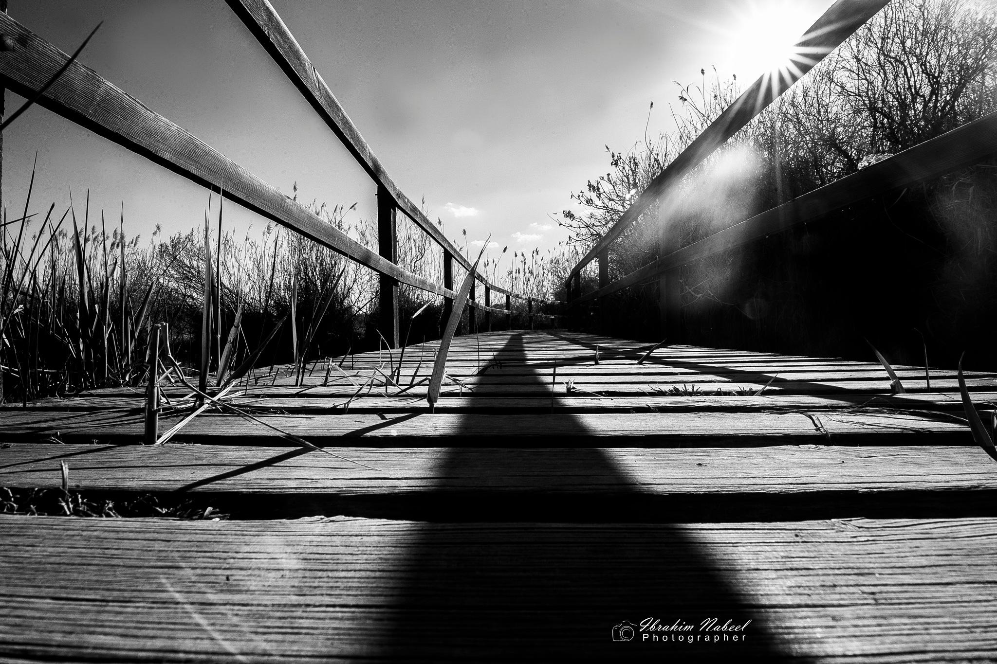 Short road by Ibrahim Nabeel