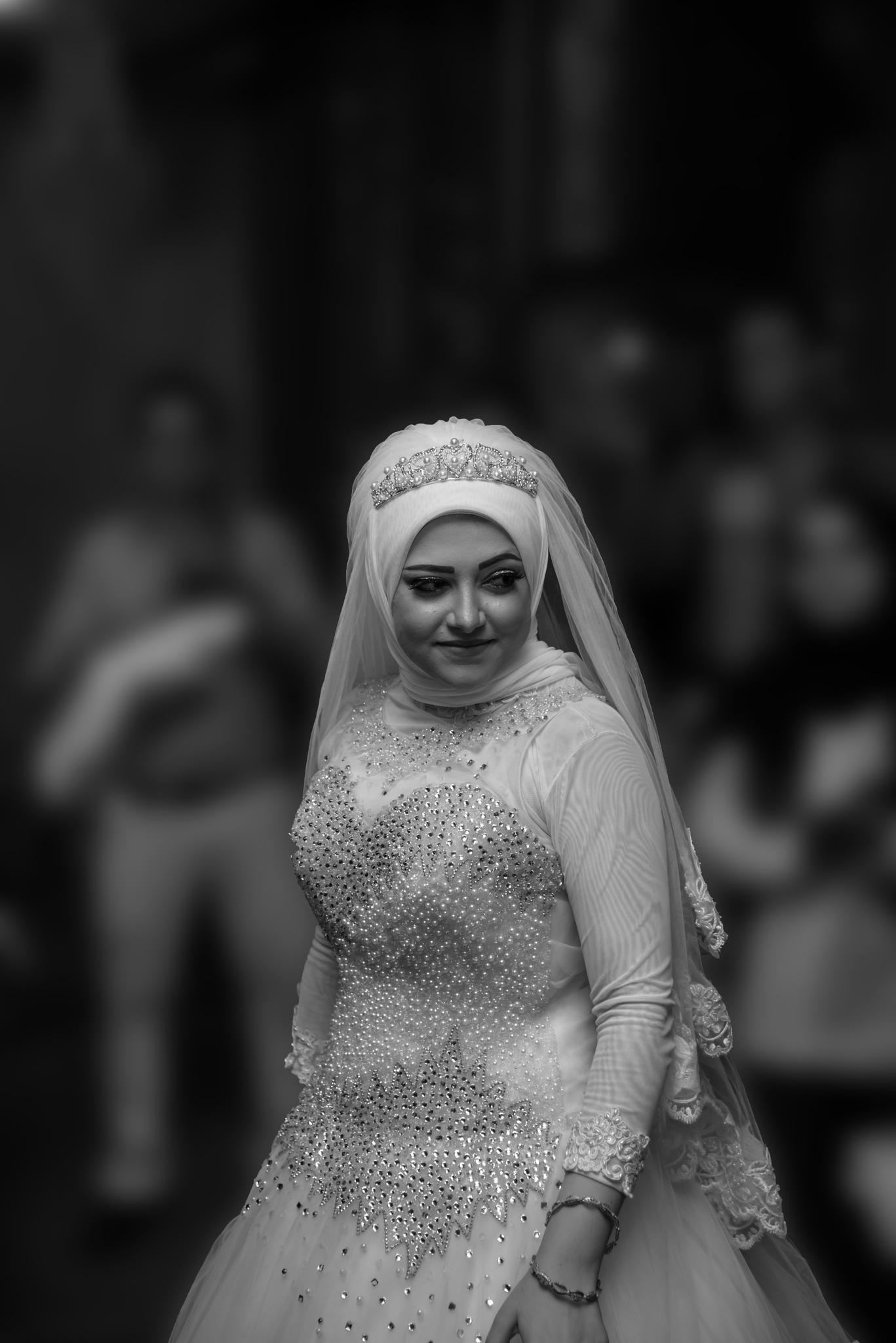 Queen by Ahmed Abu-Taleb