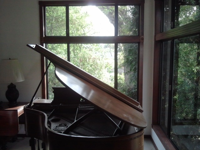 piano by winstontiao
