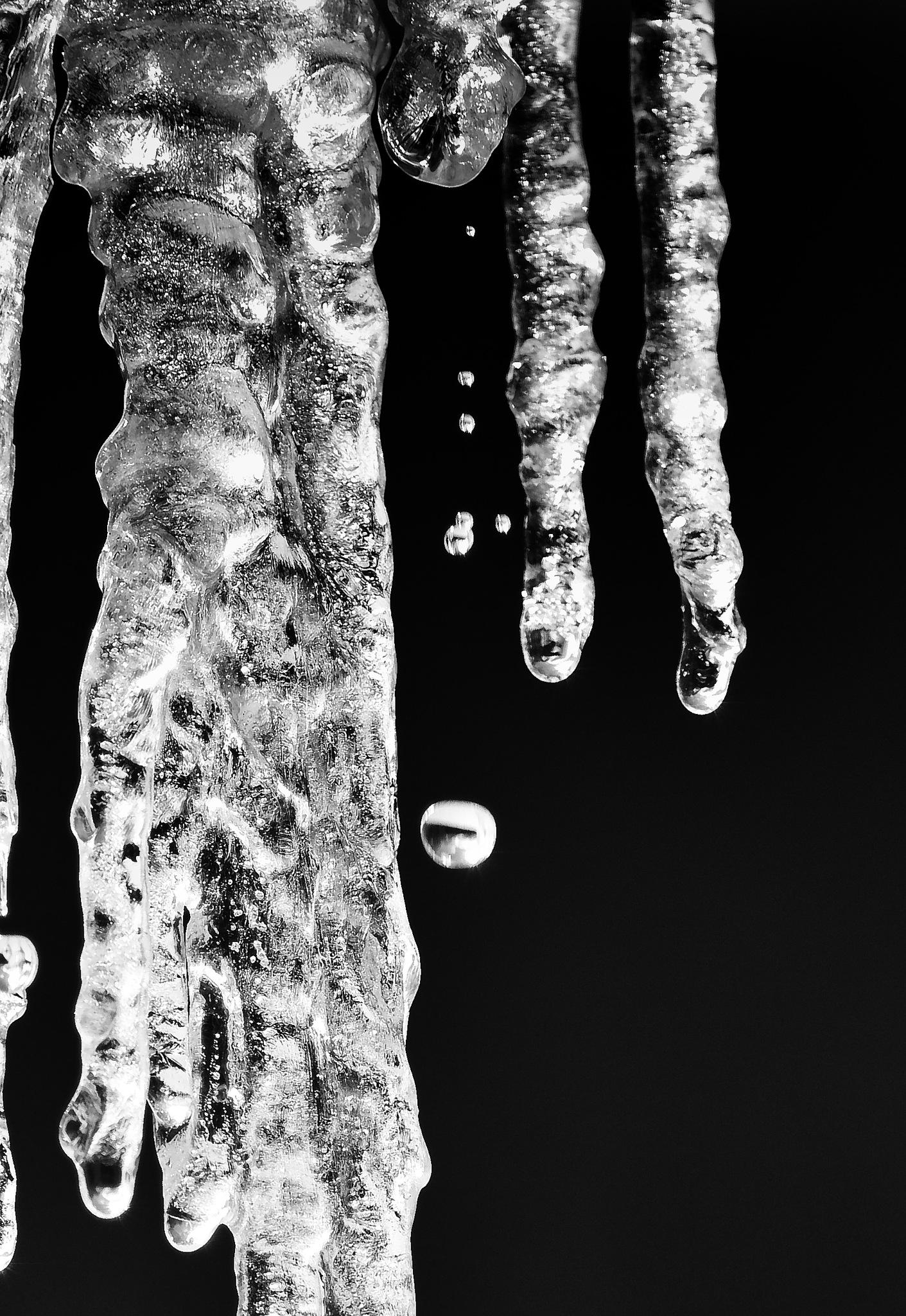 Drip.drip... by Dr Martin Wenzel