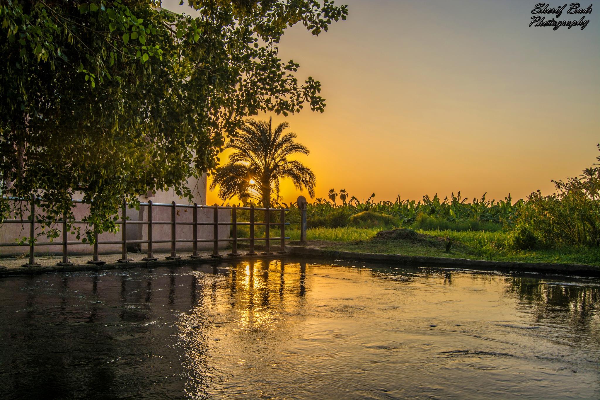Aswan by Sherif Badr