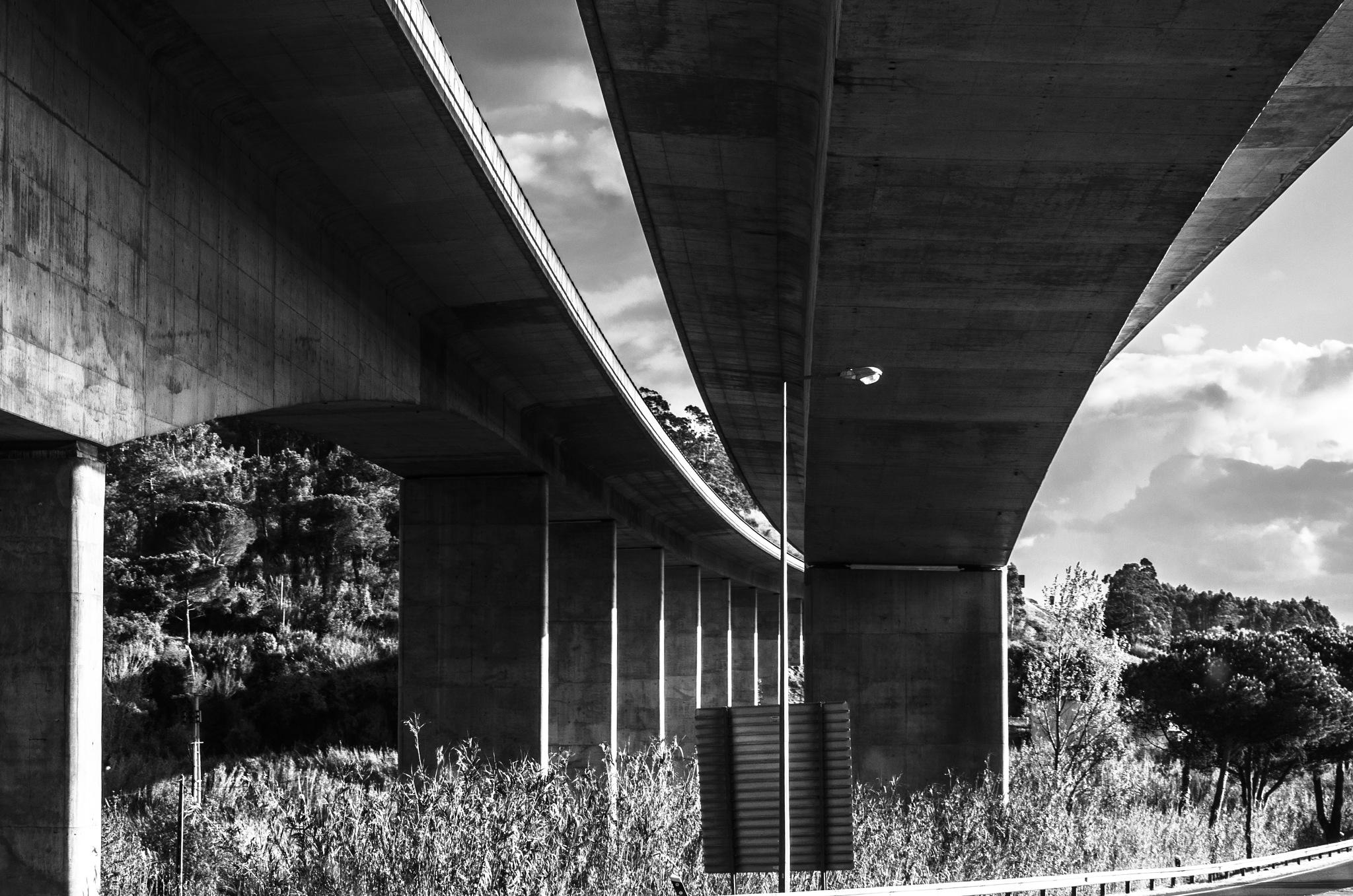 Roadway by Noemi Rosa