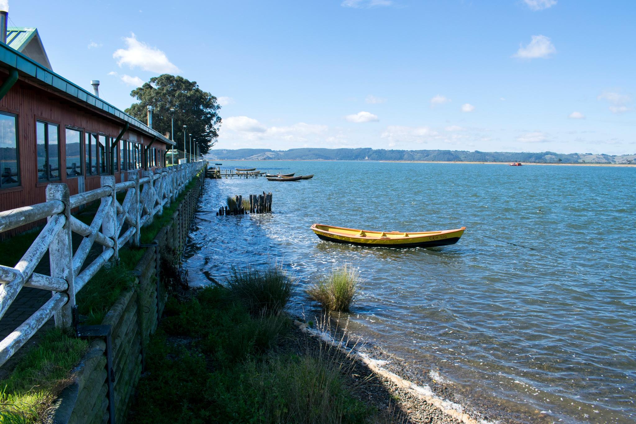 (0912) Nehuentúe, IX Región de La Araucanía, Chile by Patricio Cabezas
