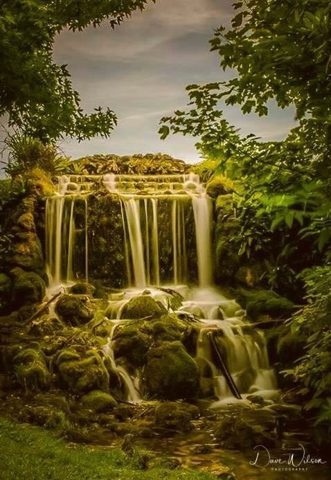 Little Bredy Waterfall  by Dave Wilson