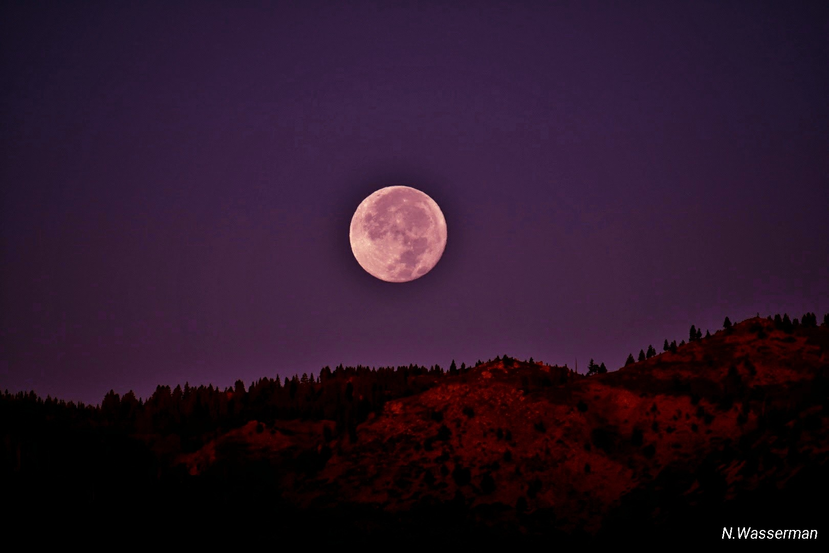 Harvest Moon Overlooking the Sierras by Rain Shine Mochi