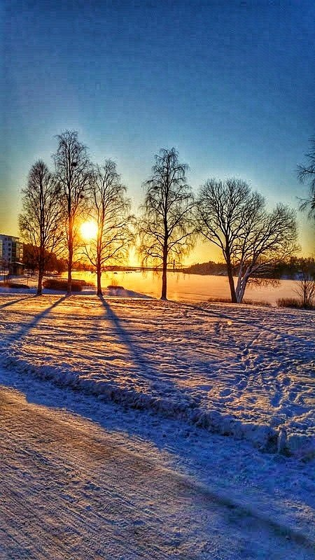 A sunny winter day  by Pelle Westberg