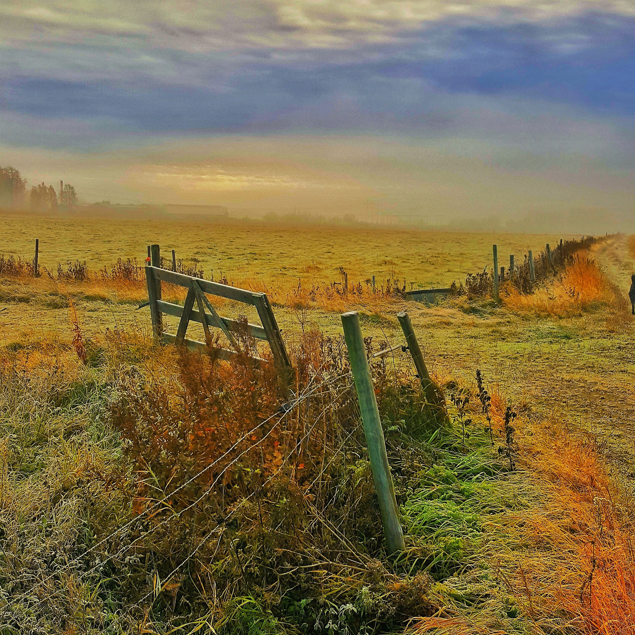Autumn in the countryside  by Pelle Westberg