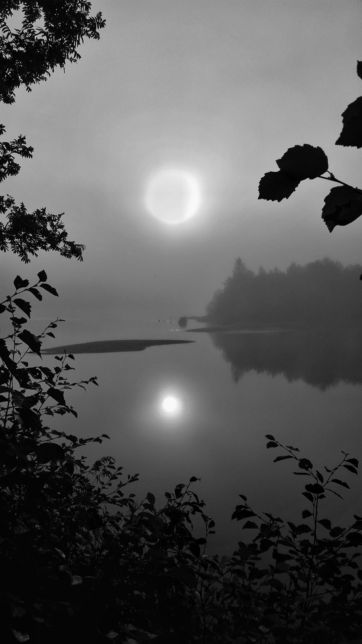 Reflections on the river bw  by Pelle Westberg