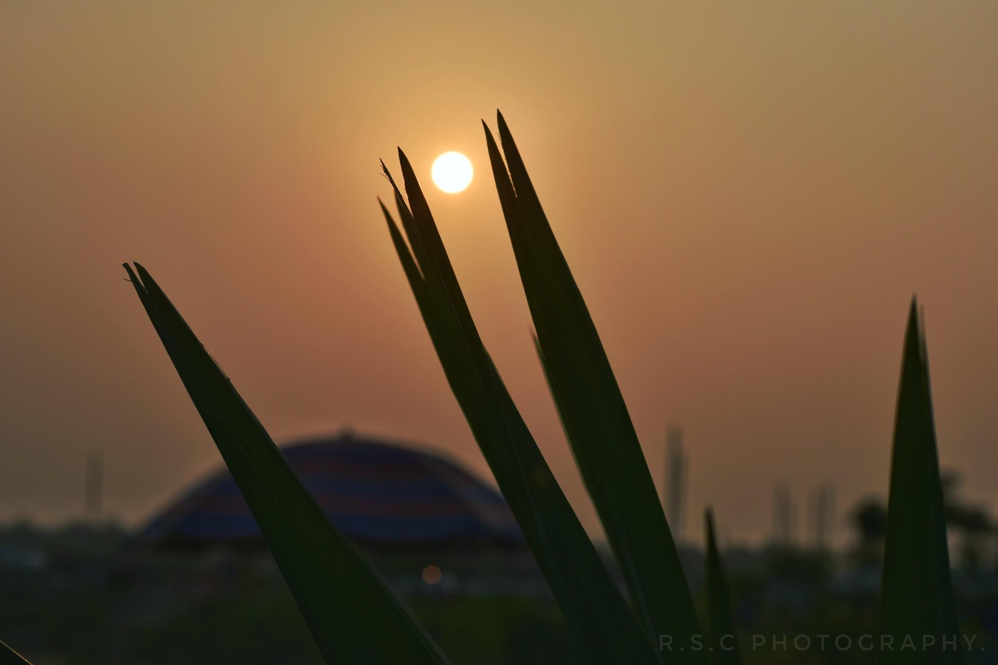 End of the day.... by Rizwanul Shams Chowdhury