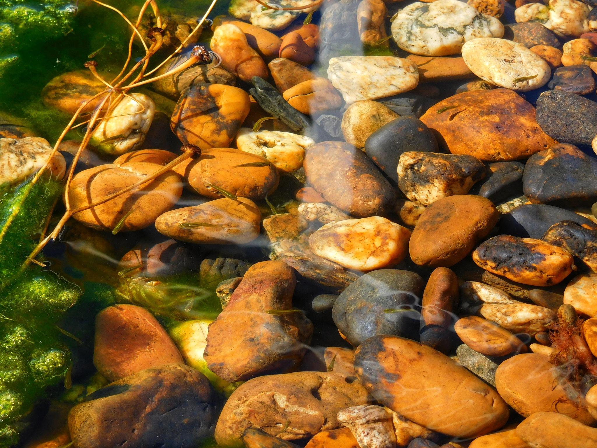 Rocks under water by Luso
