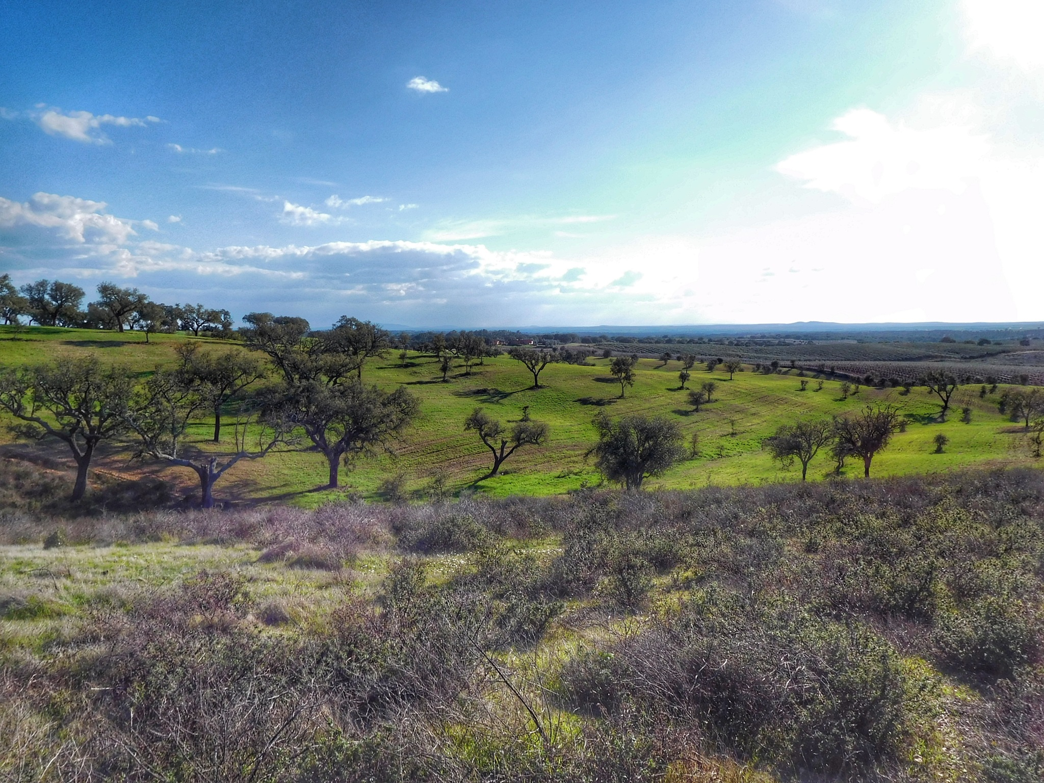 Rural view by Luso