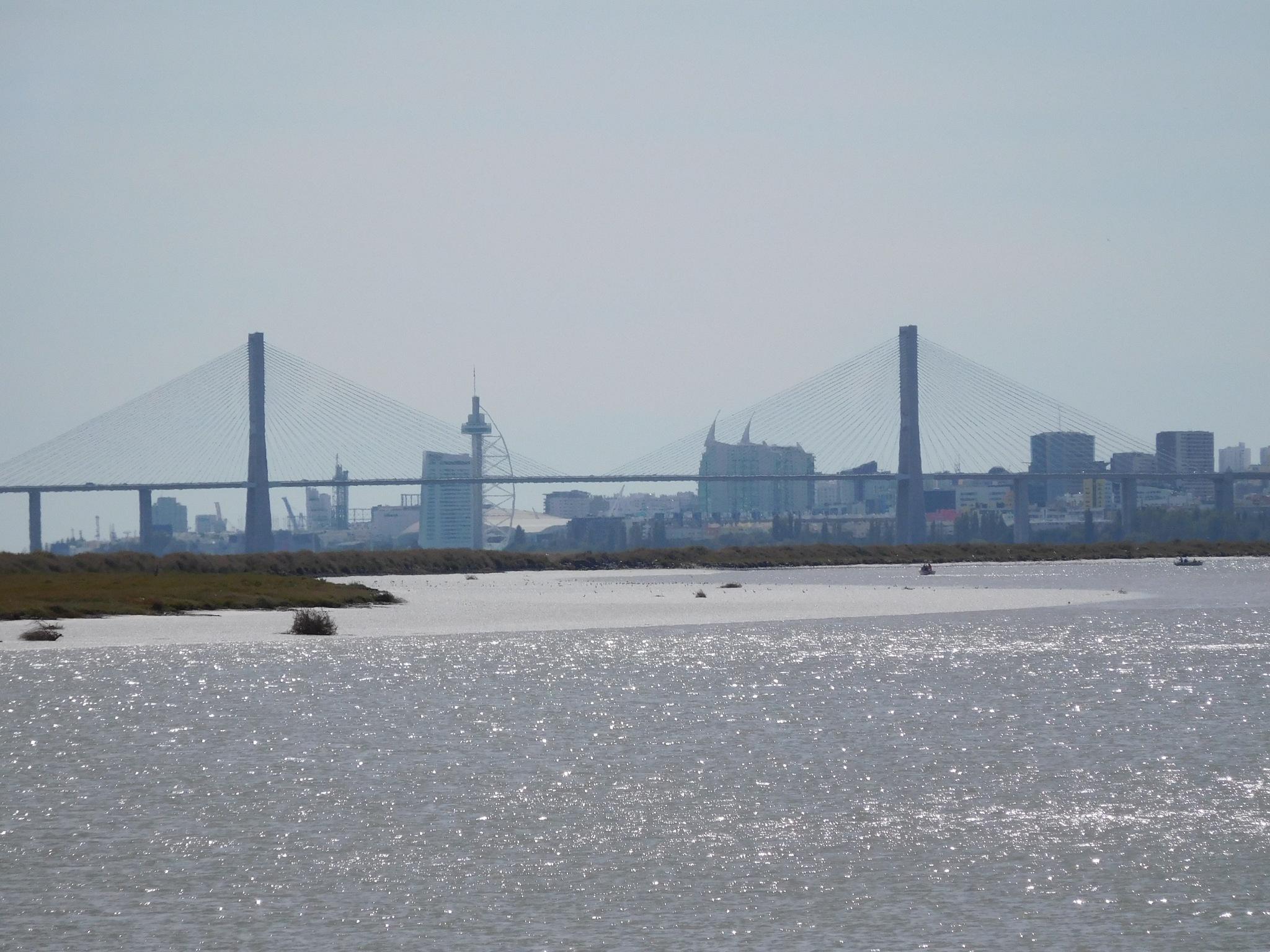 Vasco da Gama bridge by Luso