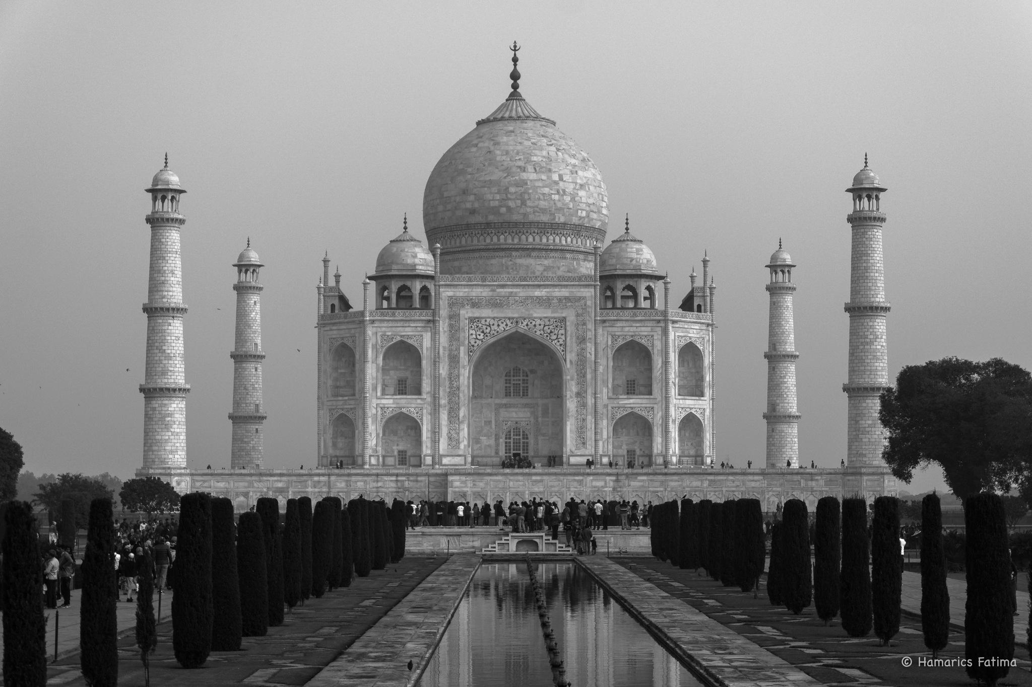 Taj Mahal, Agra by Fatima Hamarics
