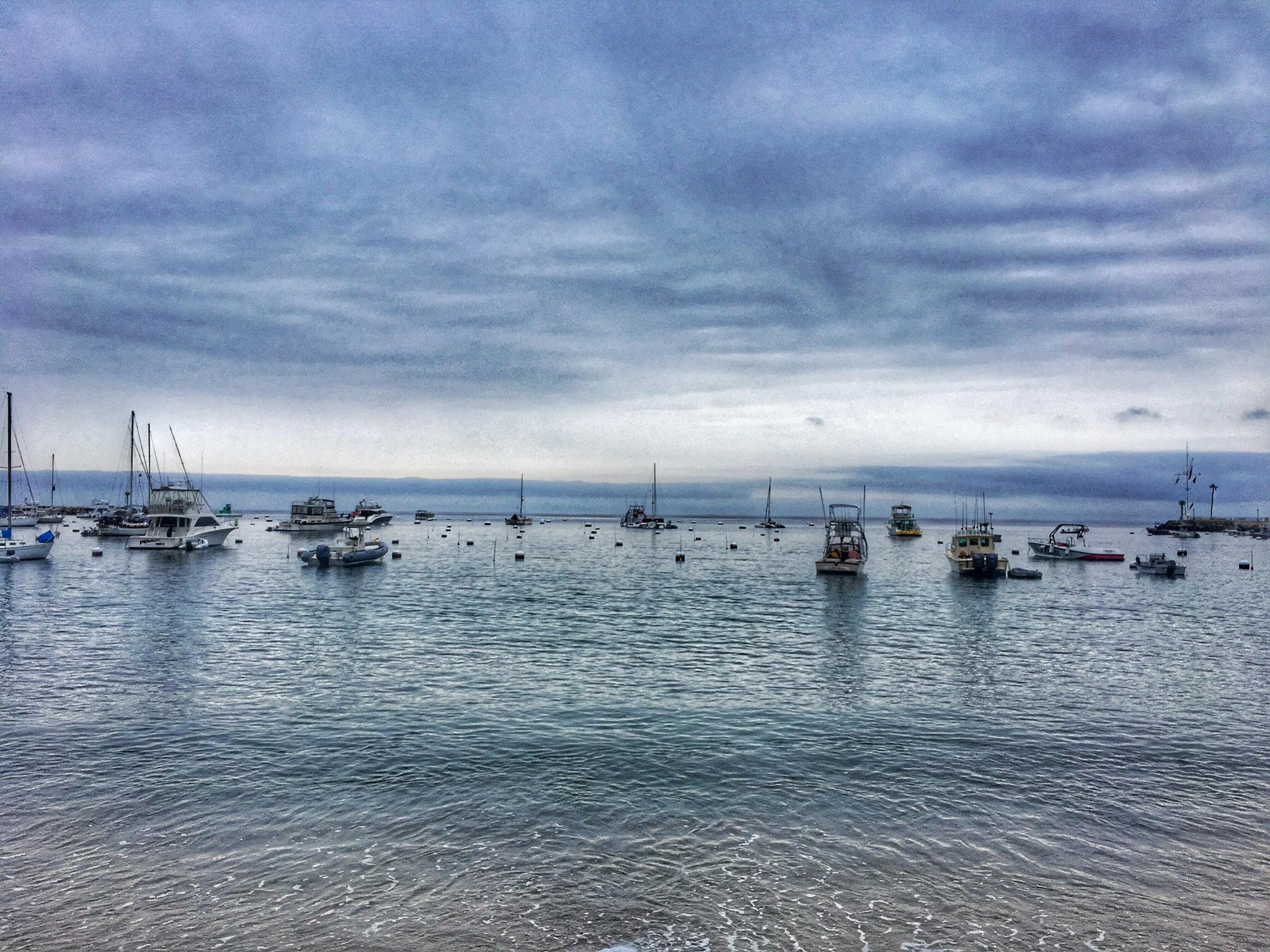 Catalina by AJ©
