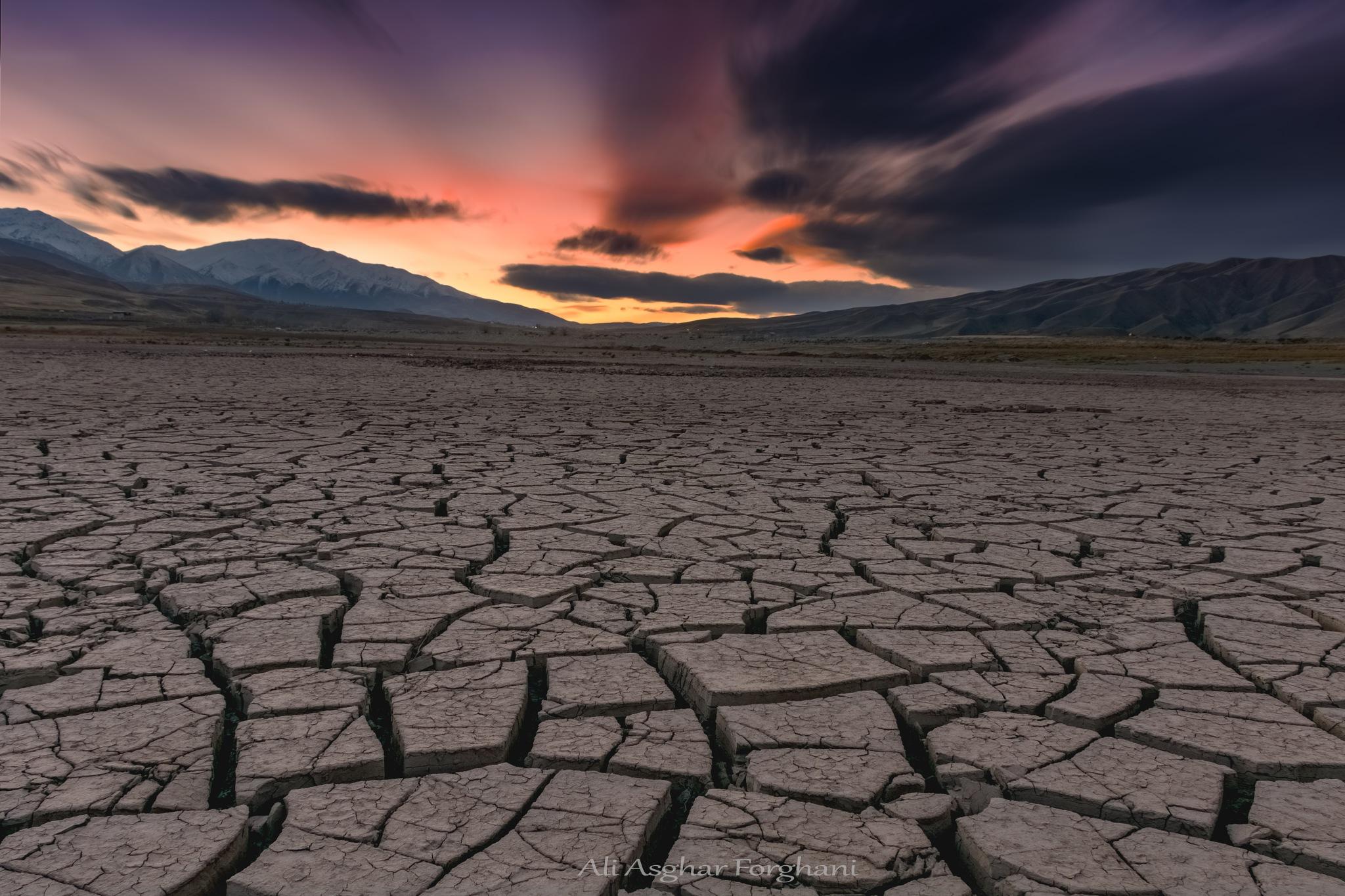 Thirsty by asghar_forghanı