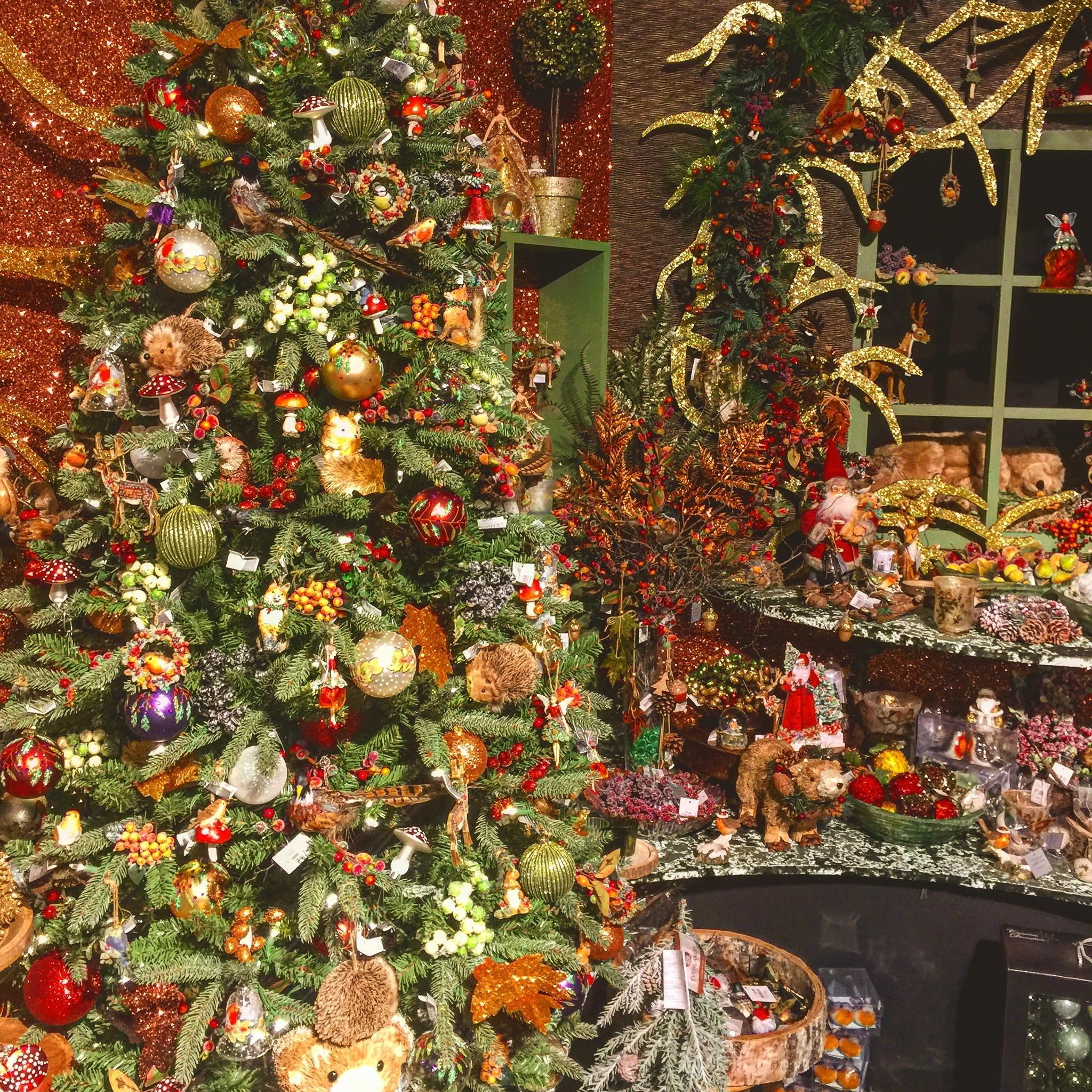 A Magical Christmas  by Joshua Daniel