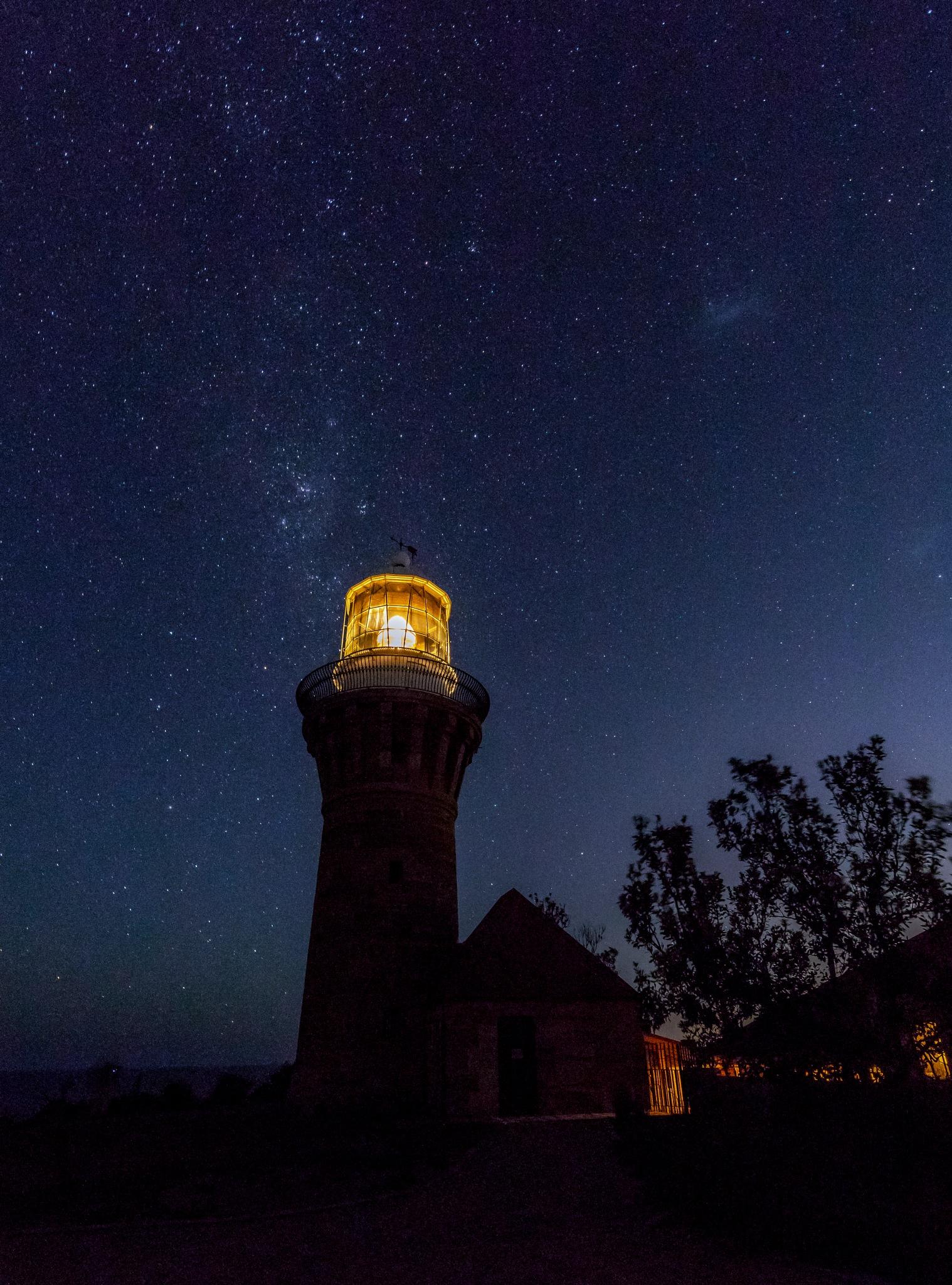 Night Light by Dwight D'Cruz