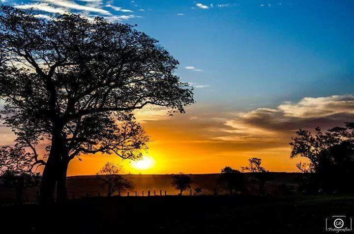 sun by Geisson Rocha