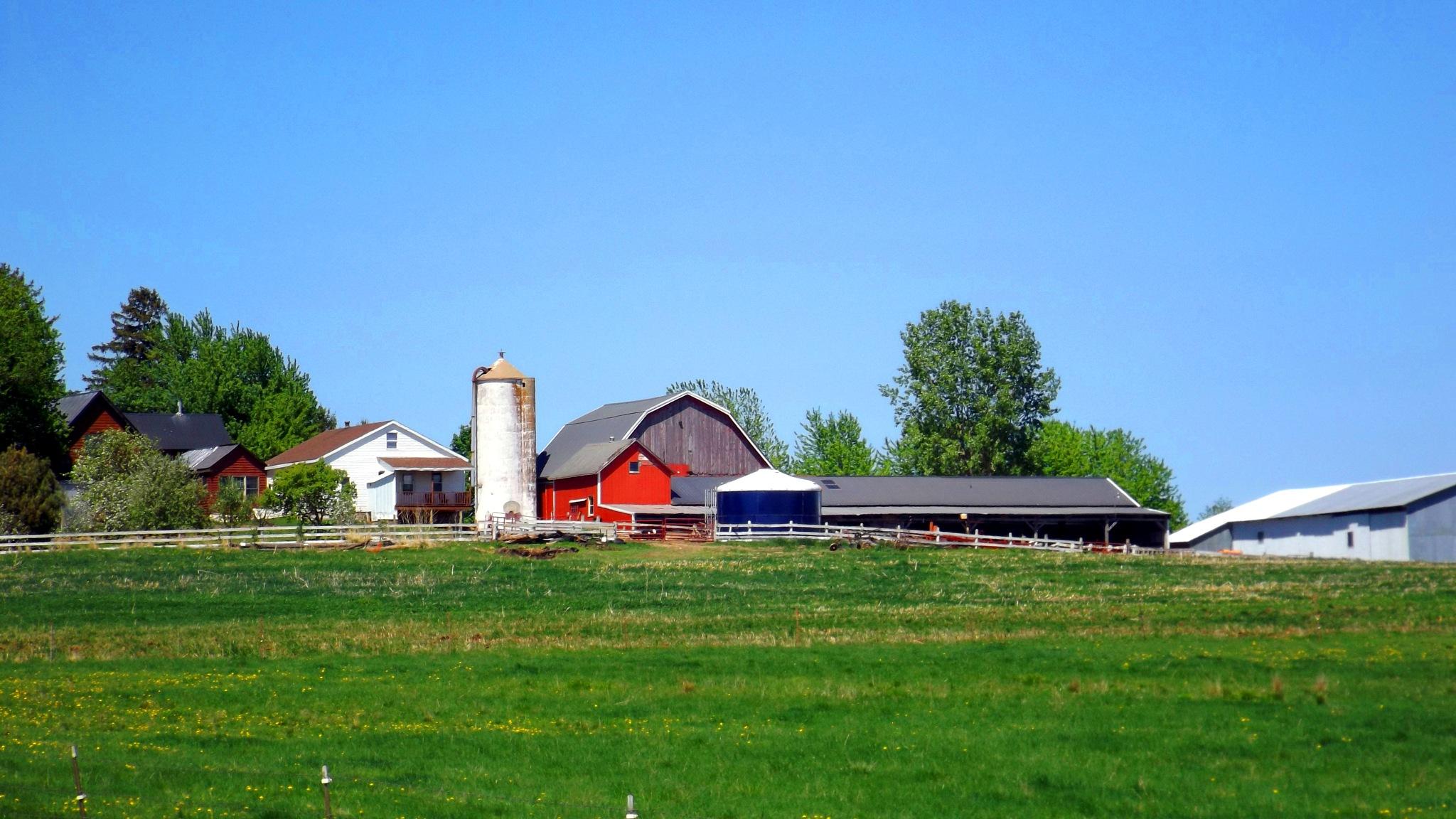 Fazenda dos Amish by R@quel